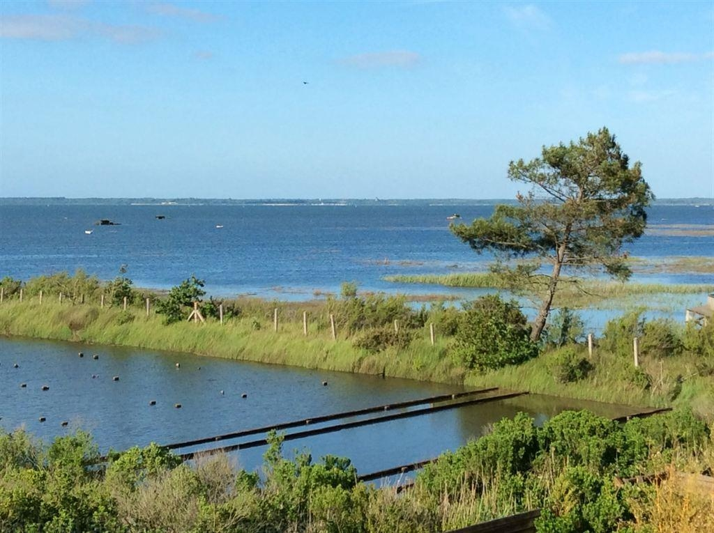Villa en bois à vendre en 1ère ligne du Bassin d'Arcachon avec piscine