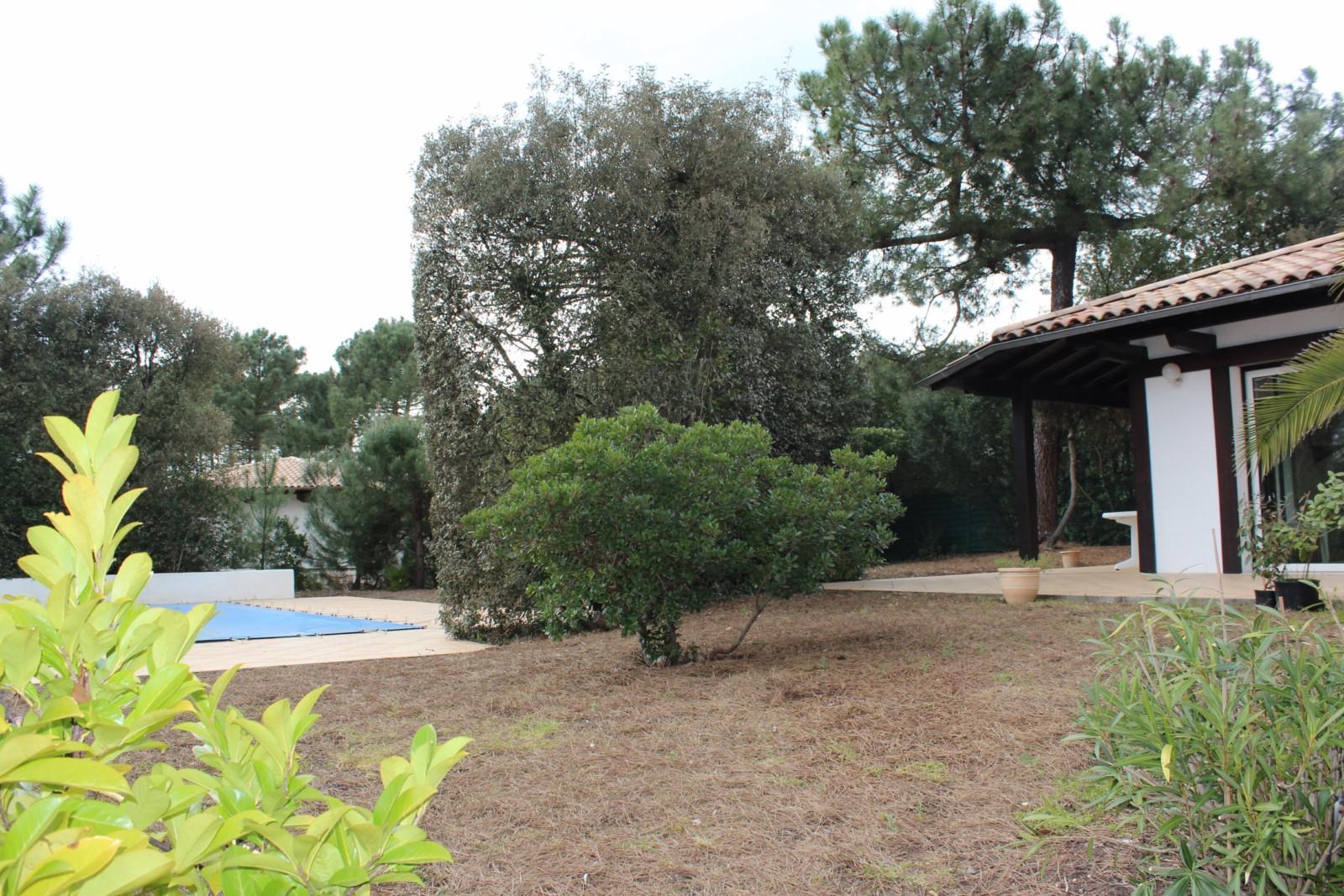 Villa avec piscine à louer Pyla sur Mer