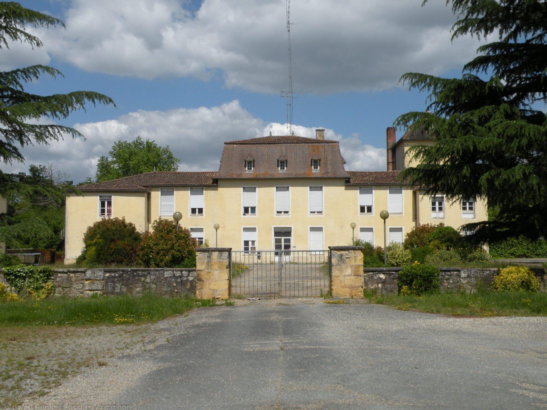 Chateau en pierre à vendre proche Bordeaux à Hostens sur une grande propriété