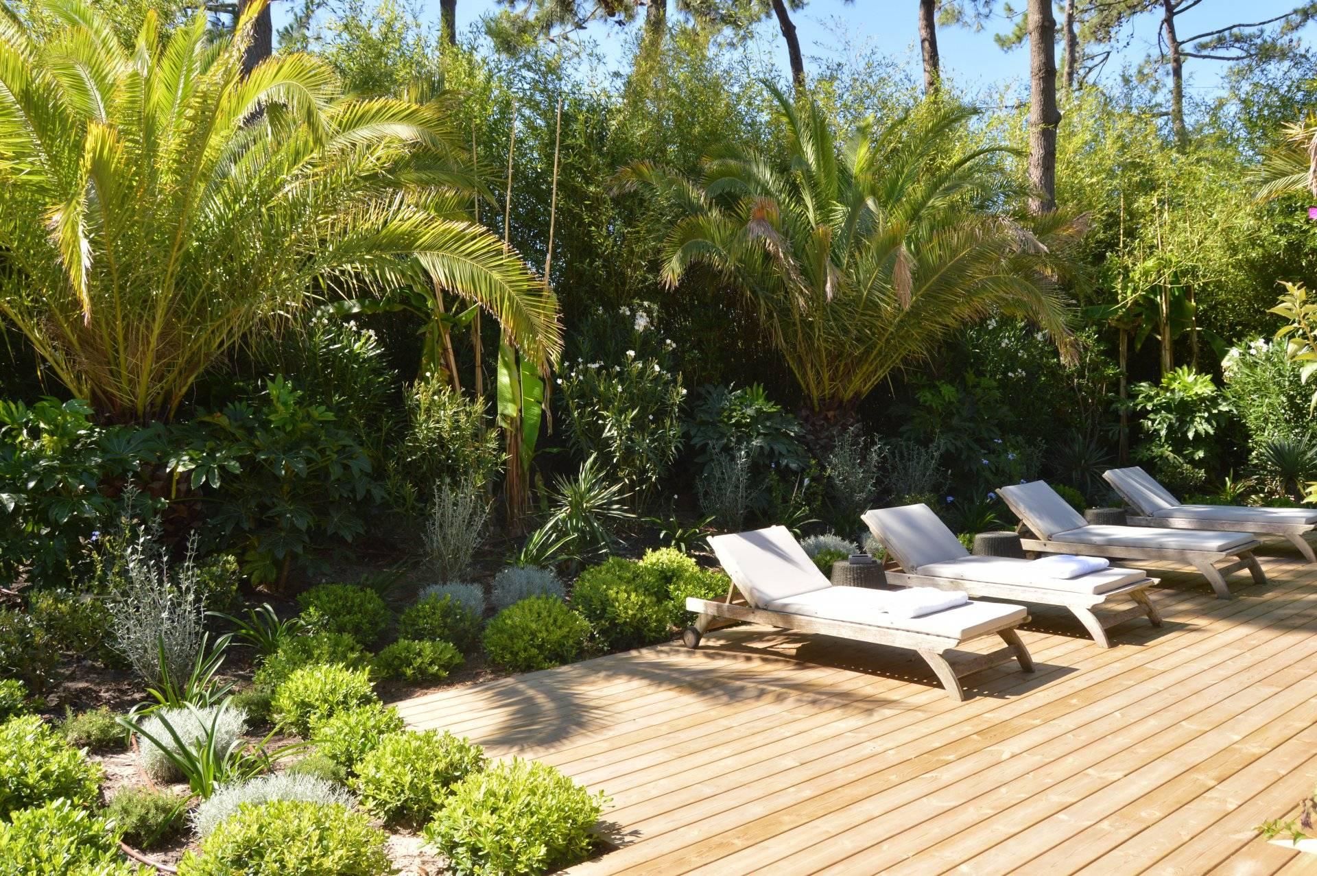 Villa d'architecte neuve en bois avec piscine CAP FERRET VILLAGE