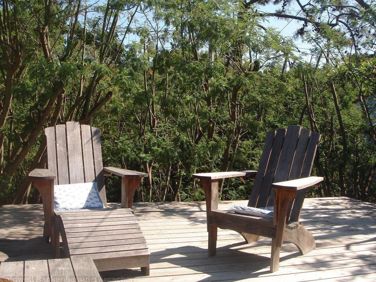 vente maison villa lege cap ferret 44 hectares superbe. Black Bedroom Furniture Sets. Home Design Ideas