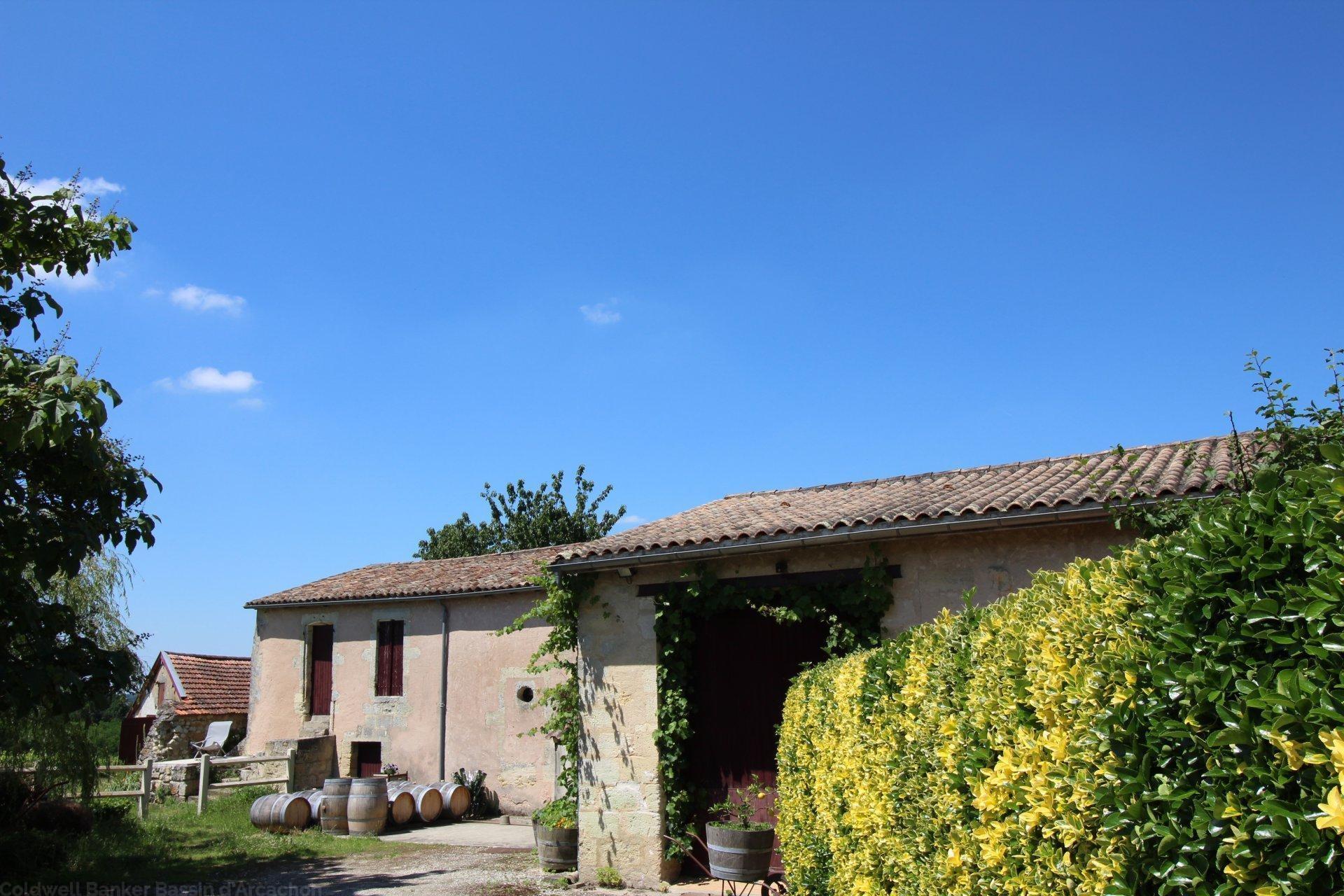 Vente propriété viticole en blayais saint ciers de canesse
