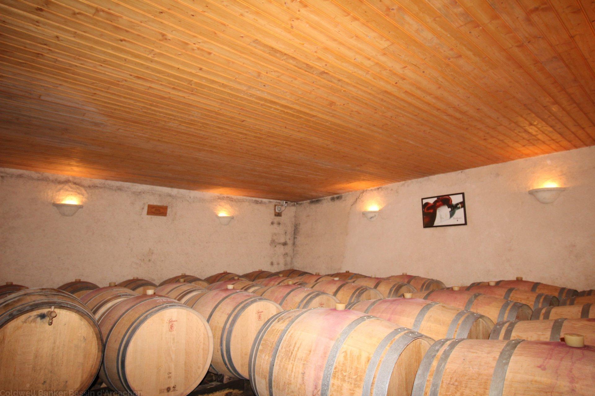 Achat propriété viticole en blayais saint ciers de canesse