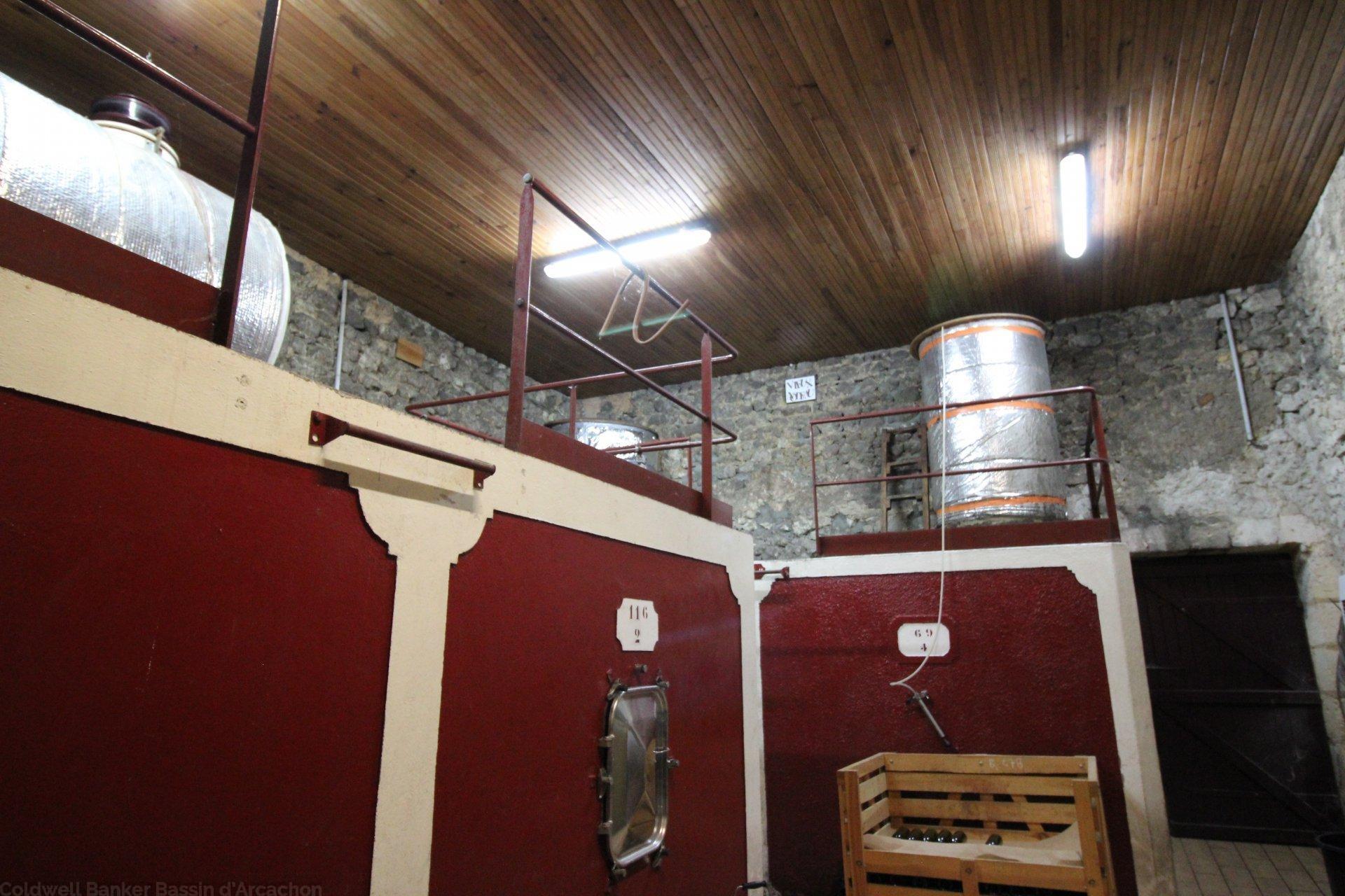 Acheter propriété viticole en blayais saint ciers de canesse