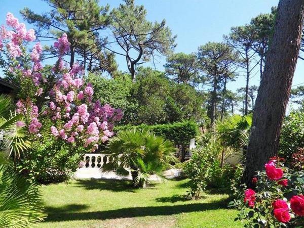 beau jardin pyla sur mer la corniche