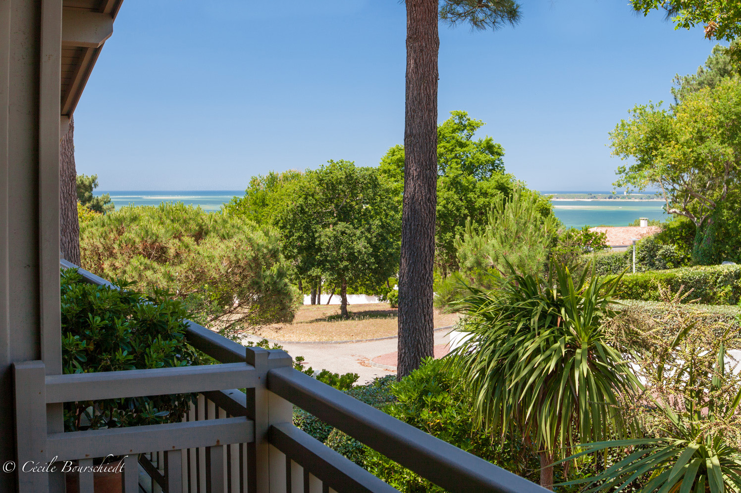 grande villa à vendre avec terrasse vue bassin Pyla sur Mer