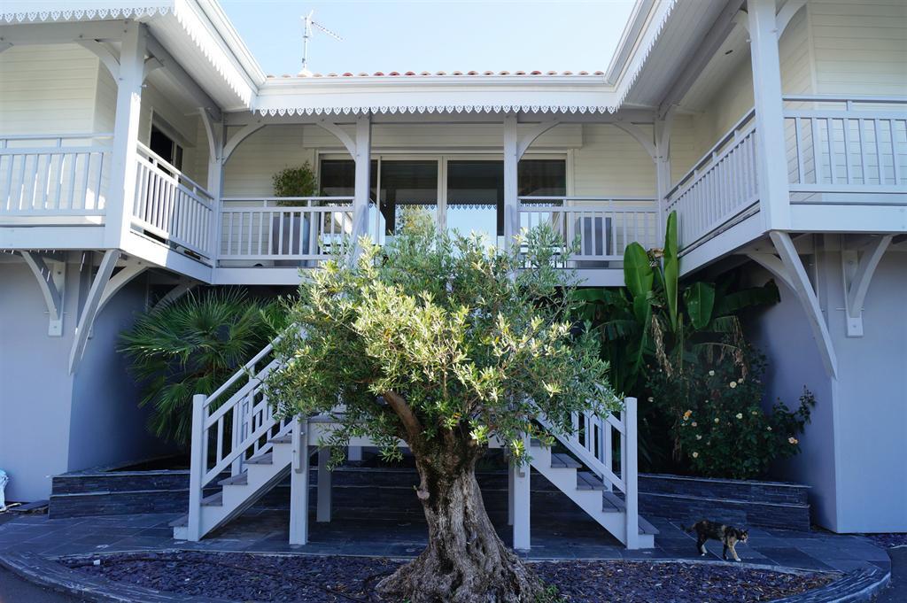 à vendre villa d'architecte bassin d'arcachon