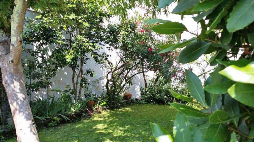Jardin appartement proche commoditées