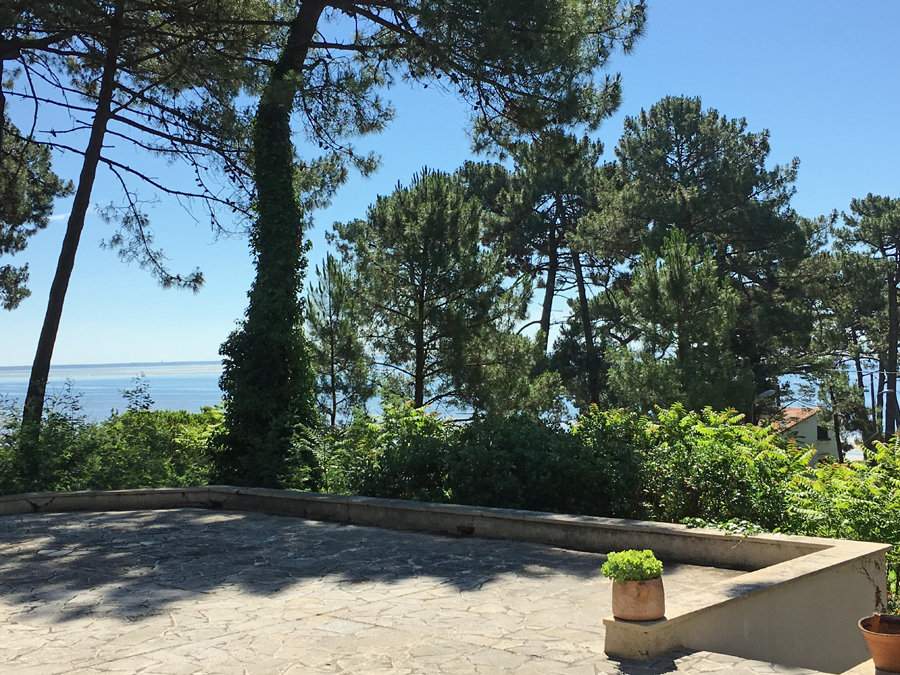 achat villa familiale à rénover bord de bassin Cap Ferret
