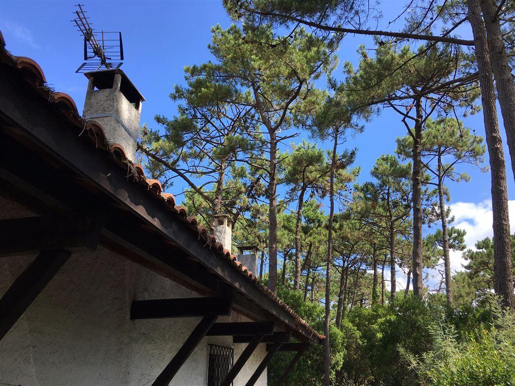 Villa landaise entre océan et bassin à vendre LEGE CAP FERRET PIRAILLAN