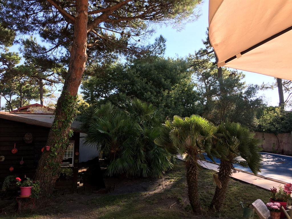 acheter villa familiale sur grand terrain proximité plages Cap Ferret