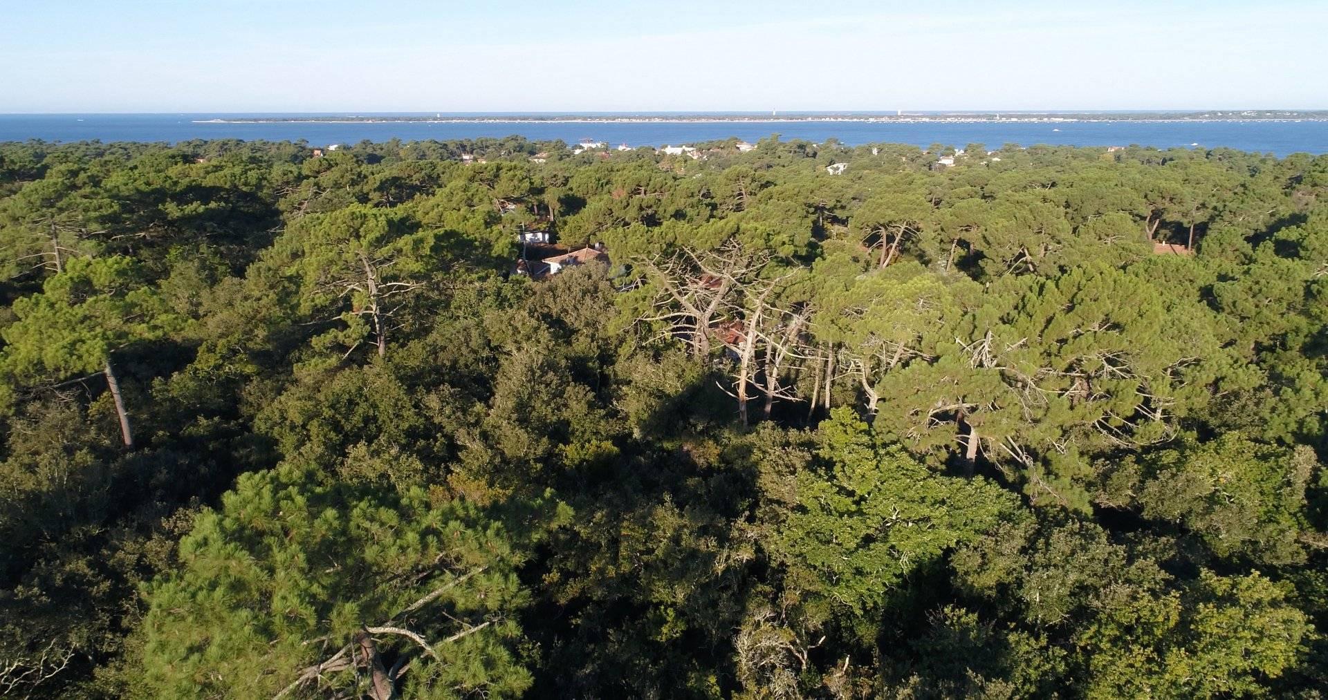 Vente terrain constructible viabilisé plus 1000 m2 pyla sur mer