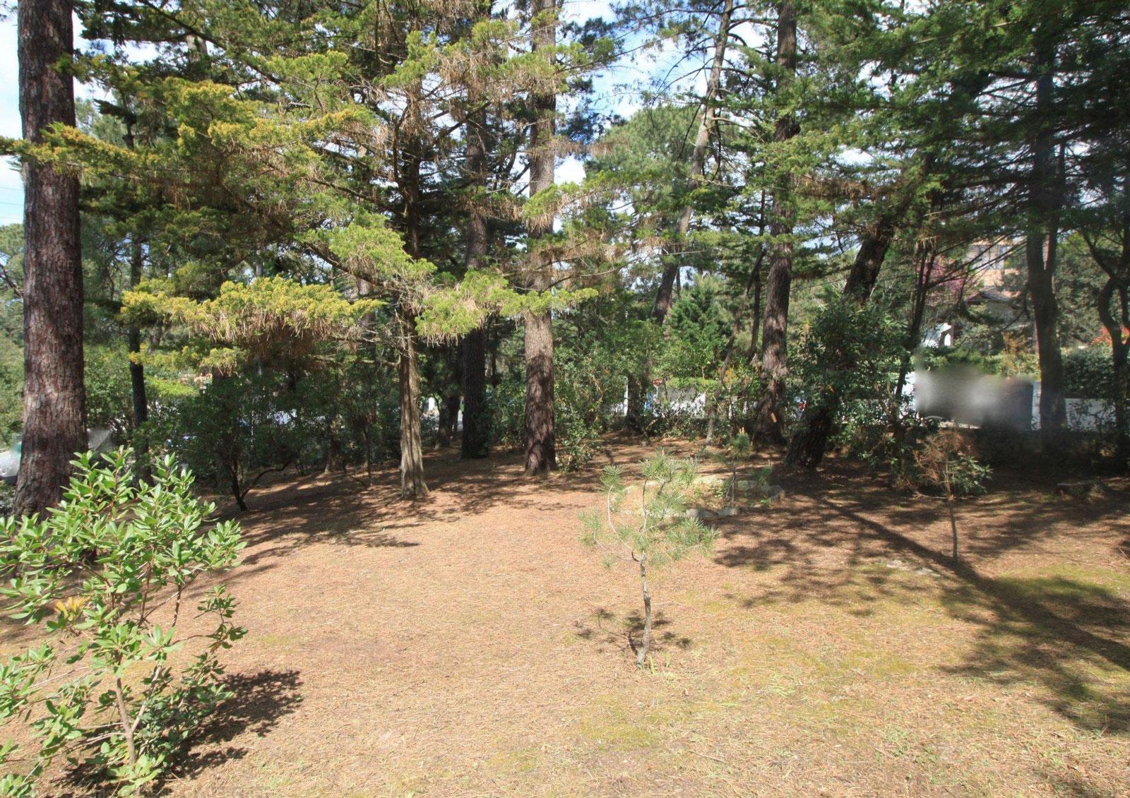 1426 m2 de terrain pour cette villa à vendre à Pyla sur mer proche du cercle de voile