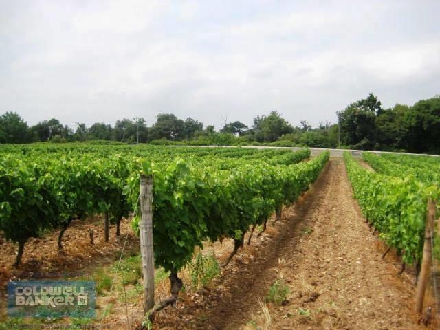domaine viticole à vendre proche Bordeaux
