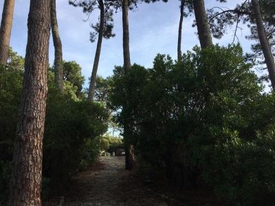 Vente Maison / Villa LEGE CAP FERRET LE CANON Villa Landaise à pied de la plage et des commerces