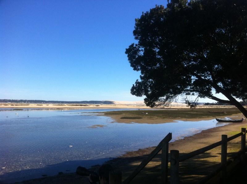 Location saisonnière vue sur bassin maison de famille au cap-ferret