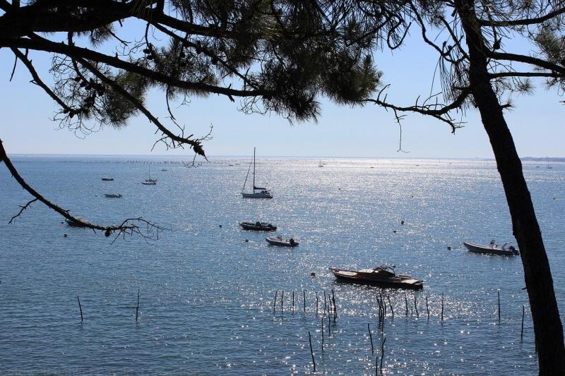 villa 4 chambres vue magnifique sur le bassin d'arcachon