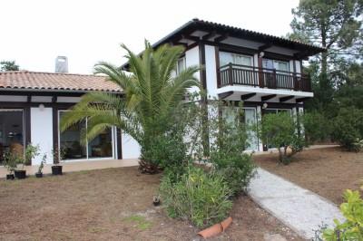 Villa avec piscine à louer à Pyla sur Mer