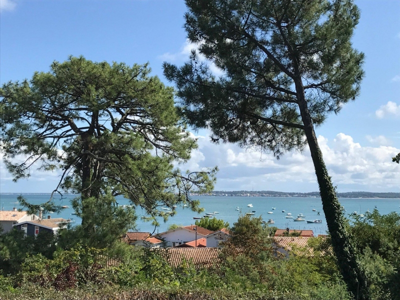 maison/villa plus 250 m2 proche plage et commerces a vendre le canon cap ferret