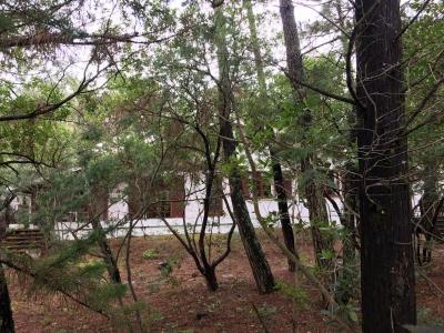 Villa 4 chambres proche océan et bassin a vendre cap ferret 44 hectares