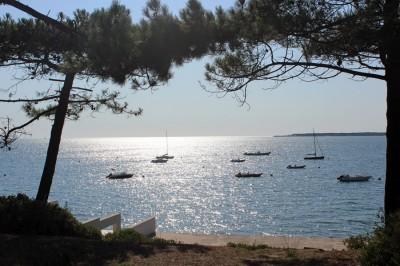 recherche villa de prestige familiale 1ère ligne à la vente Pyla sur Mer