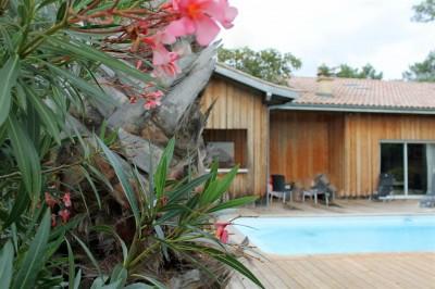 maison avec piscine et espace farniente cap ferret