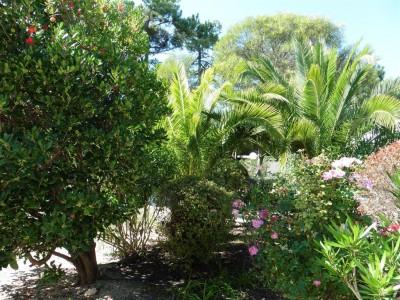 vente appartement avec jardin privé cap ferret