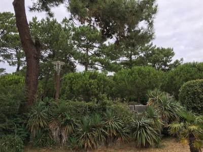 Authentique villa arcachonnaise à vendre CAP FERRET PROCHE CENTRE