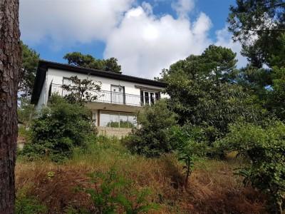 Villa à vendre avec vue bassin PYLA SUR MER SUPER PYLA