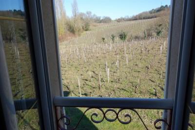 maison de maître rénovée dans les vignes à vendre région Bordelaise