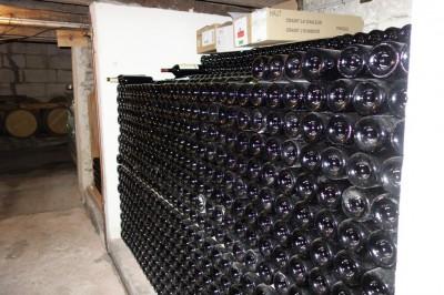 demeures de prestige à vendre dans vignes Bordelaises
