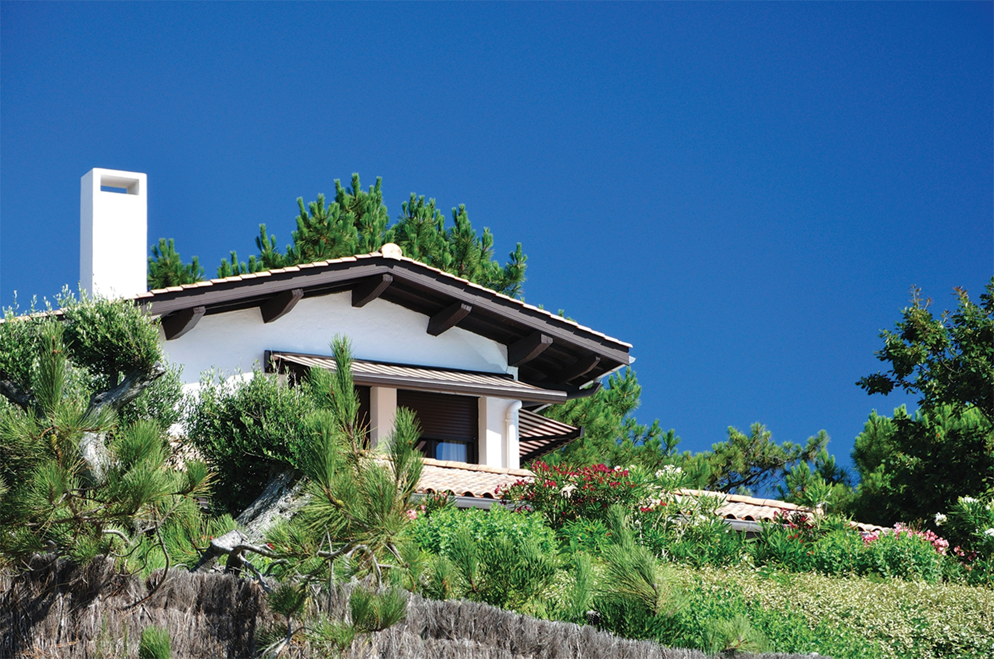 villas de prestige en location Bassin Arcachon