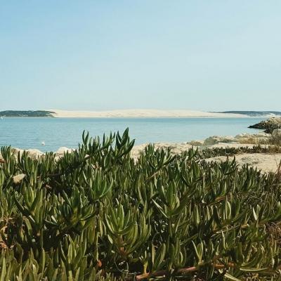 location villa de charme Cap Ferret vue bassin